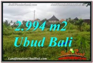 Beautiful SENTRAL UBUD 2,994 m2 LAND FOR SALE TJUB672