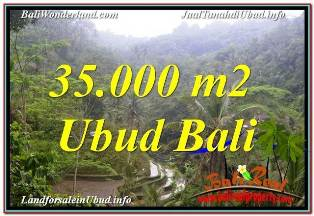 Exotic PROPERTY 35,000 m2 LAND FOR SALE IN UBUD TEGALALANG BALI TJUB674