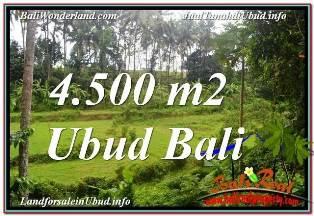 Beautiful LAND FOR SALE IN UBUD BALI TJUB675