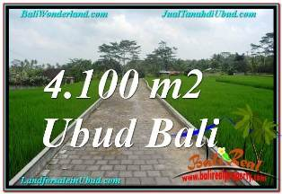 Affordable PROPERTY 4,100 m2 LAND FOR SALE IN SENTRAL UBUD BALI TJUB676