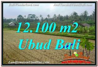 Exotic PROPERTY LAND SALE IN UBUD BALI TJUB677
