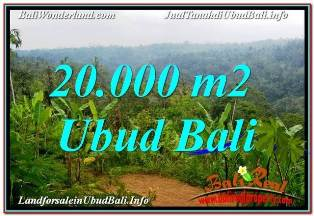Magnificent PROPERTY 20,000 m2 LAND SALE IN UBUD PAYANGAN BALI TJUB678