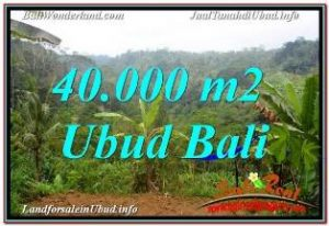 FOR SALE Exotic 40,000 m2 LAND IN UBUD PAYANGAN TJUB679
