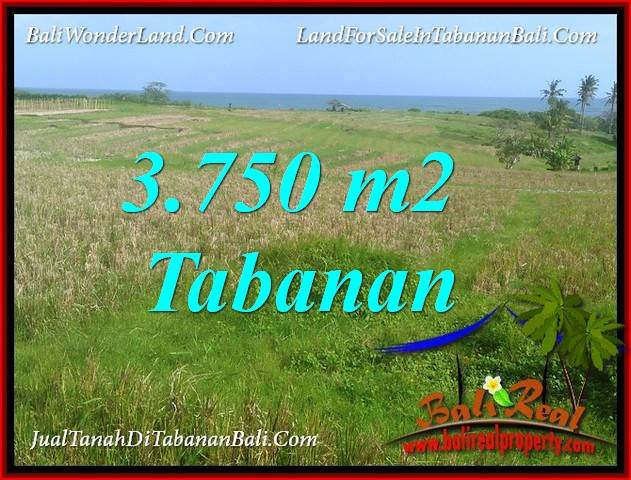 Magnificent TABANAN SELEMADEG BALI 3,750 m2 LAND FOR SALE TJTB382