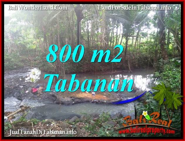 Affordable PROPERTY LAND FOR SALE IN TABANAN SELEMADEG TJTB384