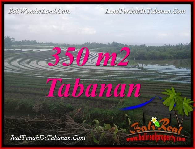 Exotic LAND IN TABANAN BALI FOR SALE TJTB386