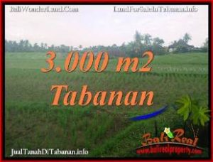 Magnificent PROPERTY LAND IN TABANAN SELEMADEG BALI FOR SALE TJTB389
