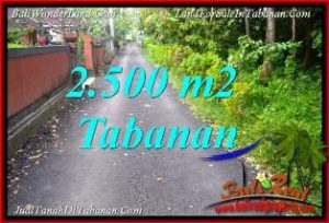 Magnificent LAND IN TABANAN SELEMADEG FOR SALE TJTB391