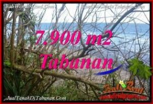 Beautiful 7,900 m2 LAND SALE IN TABANAN SELEMADEG TJTB392