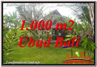 Beautiful LAND SALE IN UBUD BALI TJUB680