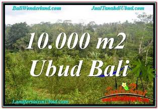 Affordable PROPERTY LAND IN UBUD FOR SALE TJUB681