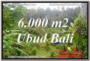 Exotic UBUD BALI 6,000 m2 LAND FOR SALE TJUB682