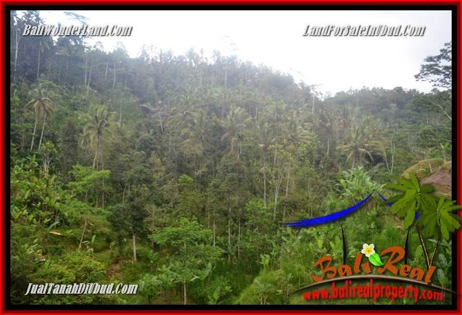 Beautiful 10,000 m2 Land for sale in Ubud Tegalalang TJUB683