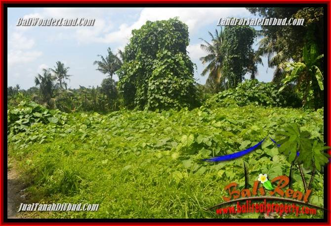 FOR sale Magnificent Property Land in Ubud TJUB684