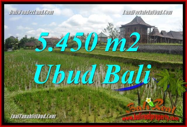 Affordable Property 5,450 m2 Land sale in Sentral Ubud Bali TJUB688