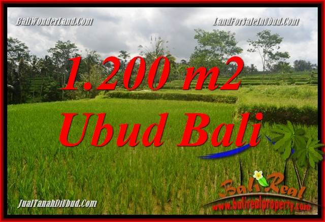 Affordable 1,200 m2 Land for sale in Ubud Tegalalang Bali TJUB693
