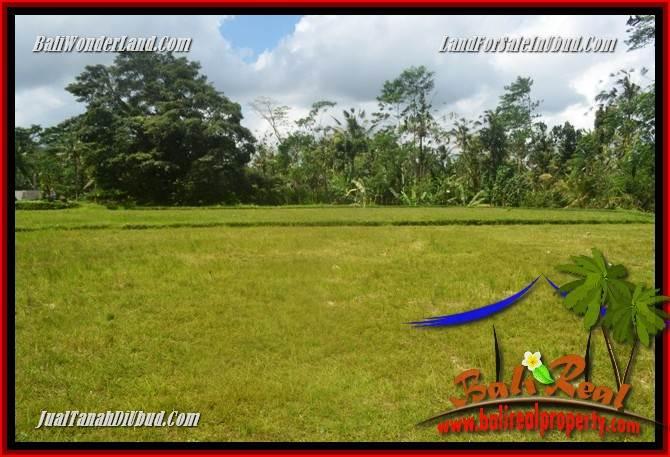 Beautiful Ubud Tegalalang 1,200 m2 Land for sale TJUB693