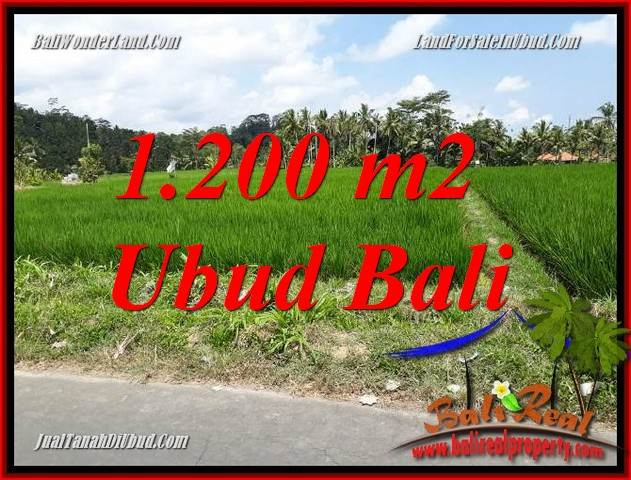 Affordable Property Land for sale in Ubud Bali TJUB694