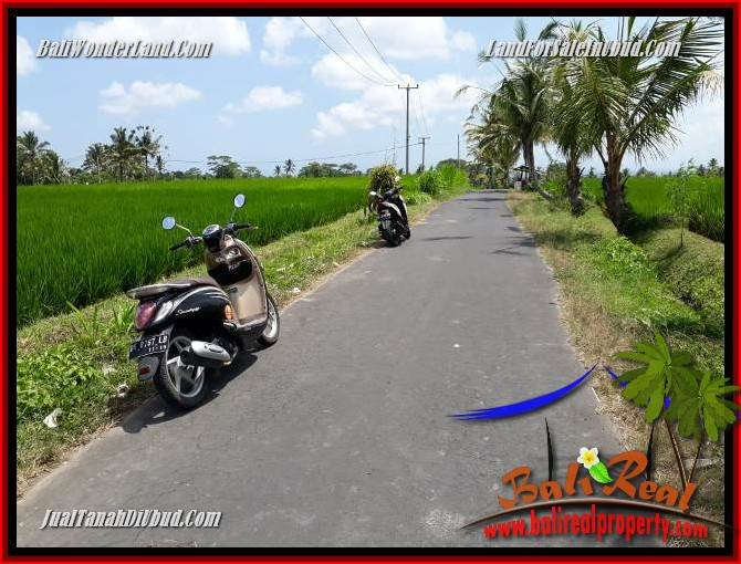 Exotic Land in Ubud for sale TJUB694