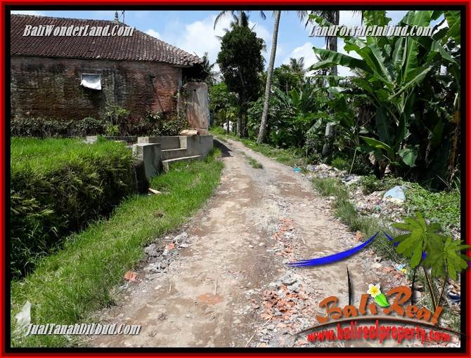 Magnificent Property 2,400 m2 Land for sale in Ubud Pejeng Bali TJUB697