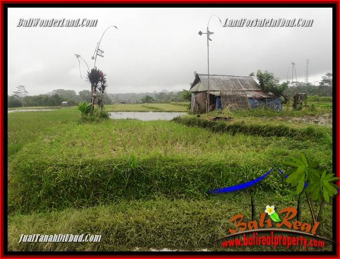 Magnificent Land sale in Ubud TJUB699