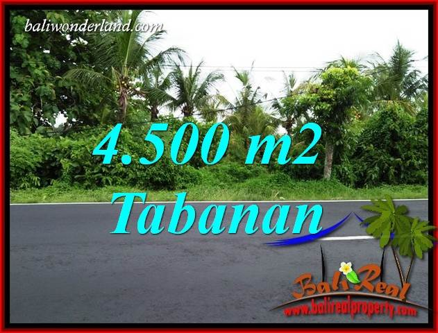Beautiful Property 4,500 m2 Land for sale in Tabanan Selemadeg Bali TJTB395