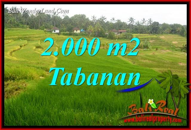 Affordable 2,000 m2 Land sale in Tabanan Bali TJTB396