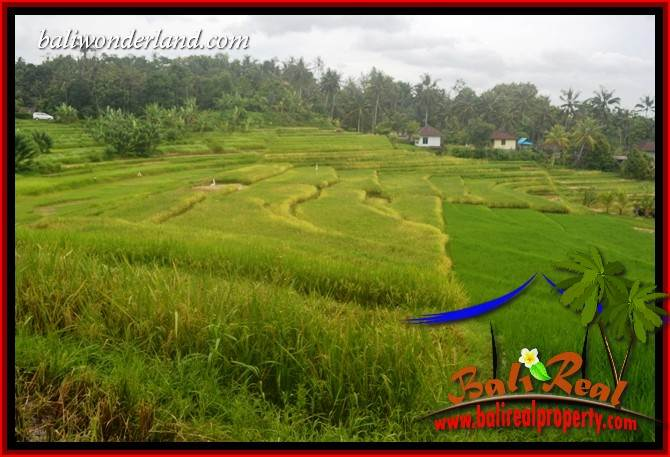 FOR sale Exotic 2,000 m2 Land in Tabanan Bali TJTB396