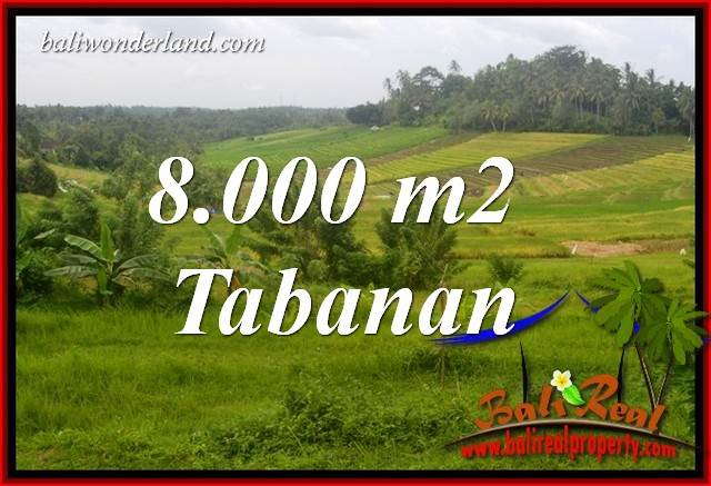 Exotic Tabanan Bali Land for sale TJTB397