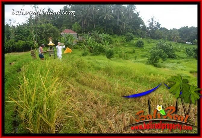 Magnificent Tabanan Land for sale TJTB397