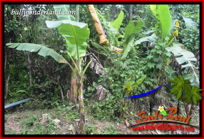 Exotic 2,000 m2 Land for sale in Tabanan Selemadeg TJTB398