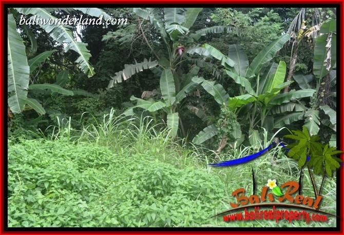 Exotic 2,000 m2 Land for sale in Tabanan Selemadeg TJTB398