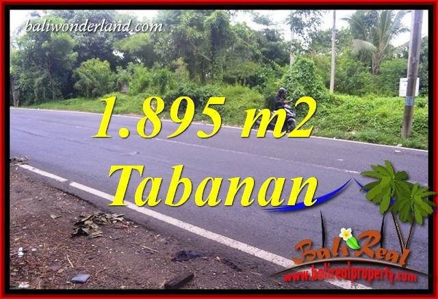 Affordable Land in Tabanan Bali for sale TJTB399