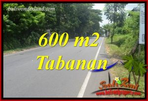 Exotic 600 m2 Land in Tabanan Bali for sale TJTB401