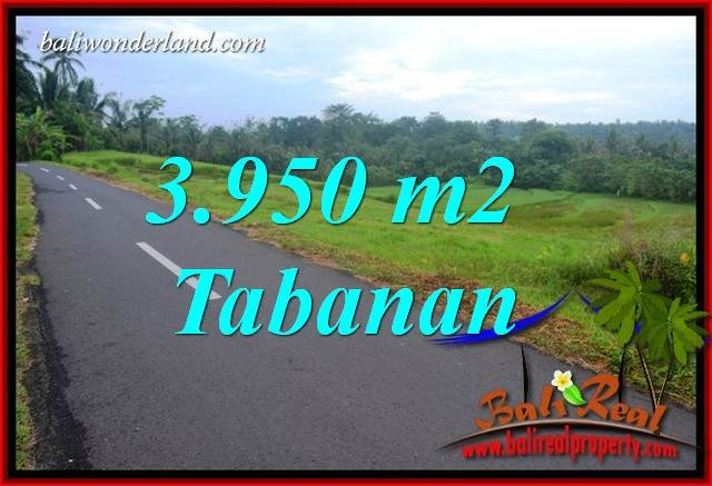 Magnificent Land for sale in Tabanan Bali TJTB402
