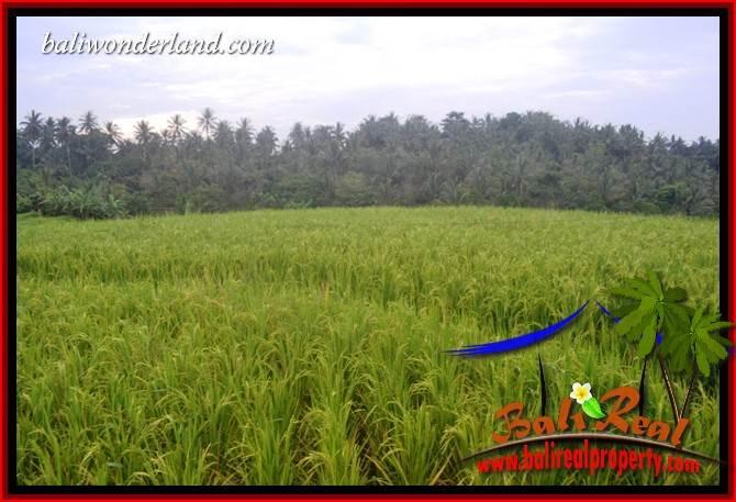 FOR sale Exotic Land in Tabanan Selemadeg Bali TJTB402