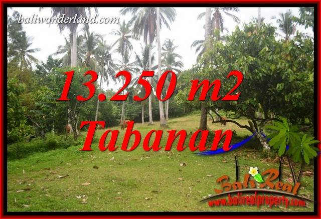 Affordable Property 13,250 m2 Land for sale in Tabanan Selemadeg Bali TJTB403