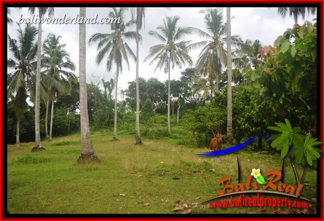 FOR sale Affordable Property 13,250 m2 Land in Tabanan Bali TJTB403