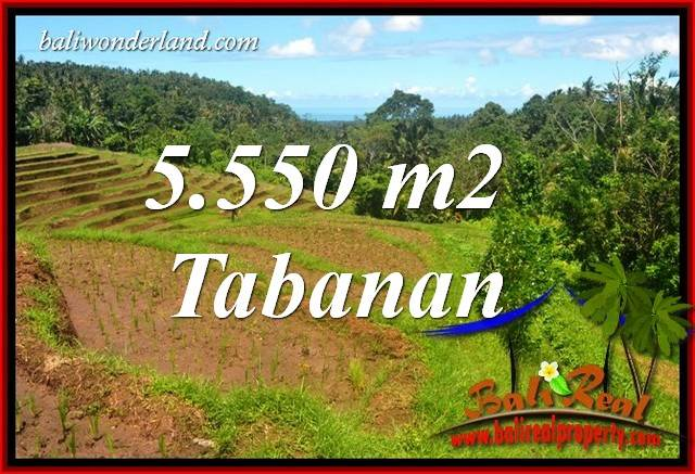 Affordable Land sale in Tabanan Selemadeg Bali TJTB405