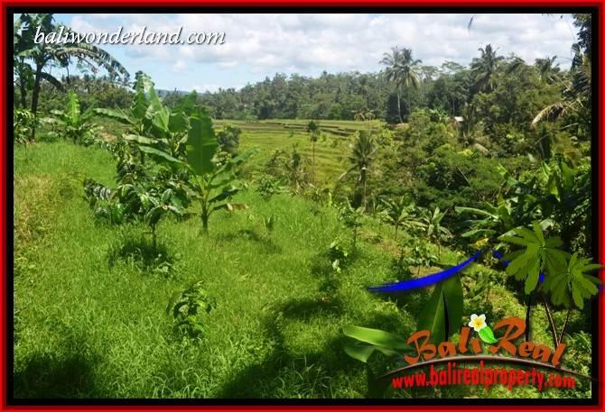 Affordable Land sale in Tabanan Selemadeg Bali TJTB405