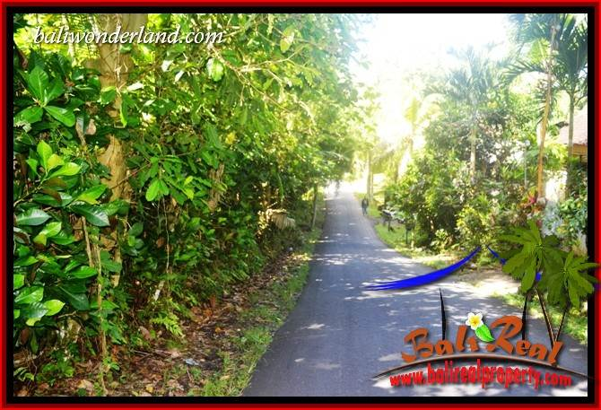 Exotic Tabanan Bali 10,000 m2 Land for sale TJTB406
