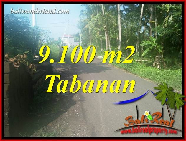 Affordable Property Tabanan Bali Land for sale TJTB407