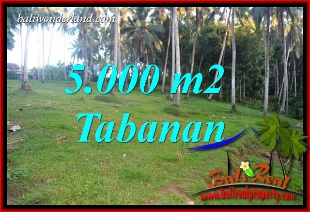 Affordable Property 5,000 m2 Land for sale in Tabanan Selemadeg TJTB408
