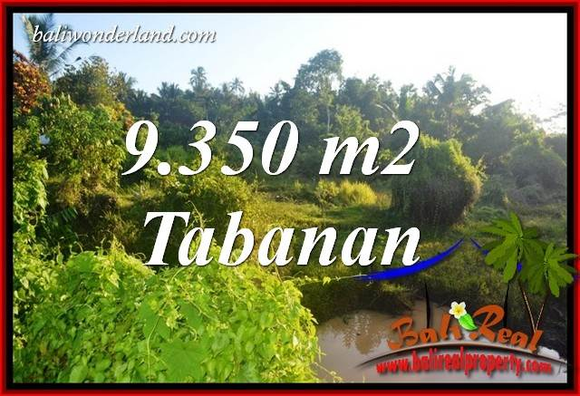 Beautiful 9,350 m2 Land for sale in Tabanan Selemadeg Bali TJTB409
