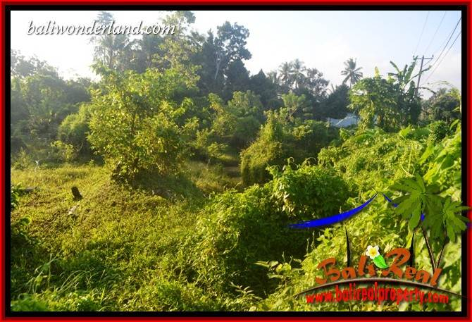 FOR sale Beautiful 9,350 m2 Land in Tabanan Bali TJTB409