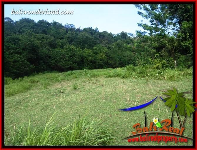 Beautiful Property Land for sale in Tabanan Bali TJTB413