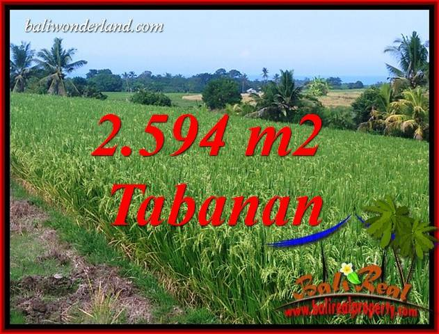 Beautiful Property Land in Tabanan Bali for sale TJTB414
