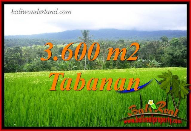 Beautiful Property Land in Tabanan Bali for sale TJTB415