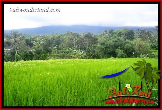 3,600 m2 Land in Tabanan Bali for sale TJTB415