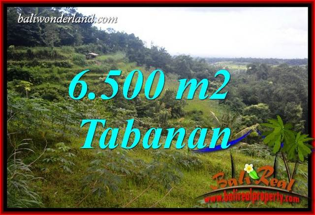 Land for sale in Tabanan Bali TJTB416